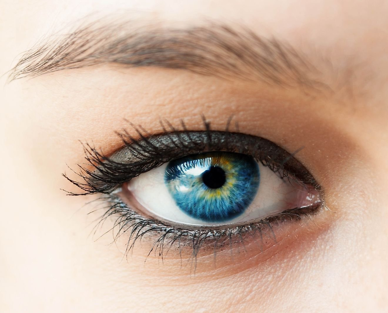 Super Fascinating Facts About The Human Eye You Probably Don't Know