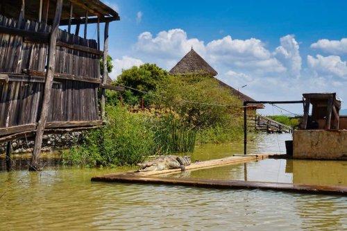 Lake Nakuru & Baringosee: bei den Flamingos im Great Rift Valley in Kenia