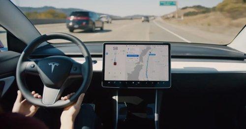 Tesla Twitter tries to 'cancel' Biden's NHTSA safety adviser over criticism of Autopilot / FSD Beta