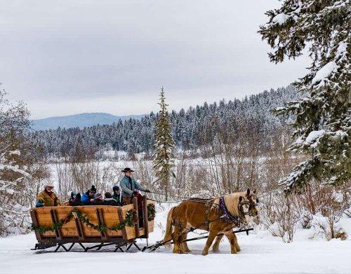 Montana's Winter Wonderland – Ski Whitefish