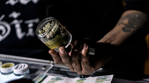 Cannabis Stealing Workers From Just About Every Other Industry