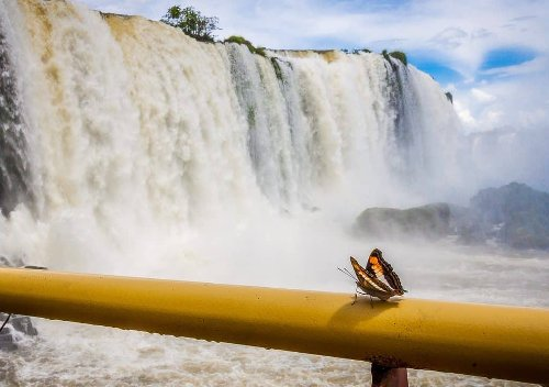 The Ultimate Guide to  Iguazu Falls (Both Sides)