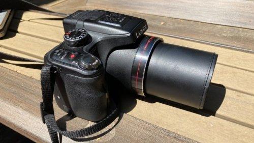 Birds and bridge cameras