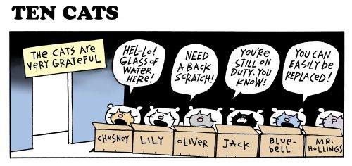 The Ten Cats Cartoons by Graham Harrop - Katzenworld