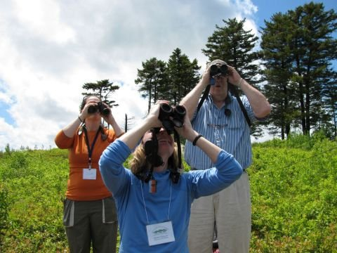 3 expert tips for a successful 1st birding outing