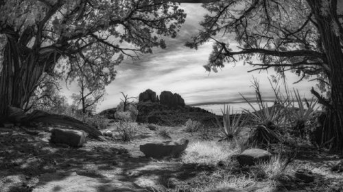 Infrared photography gets me another photo at a 'bad' time of day