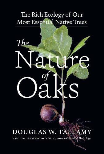 Comment on oaks: the most powerful plant of all, with doug tallamy by Nancy Holmes