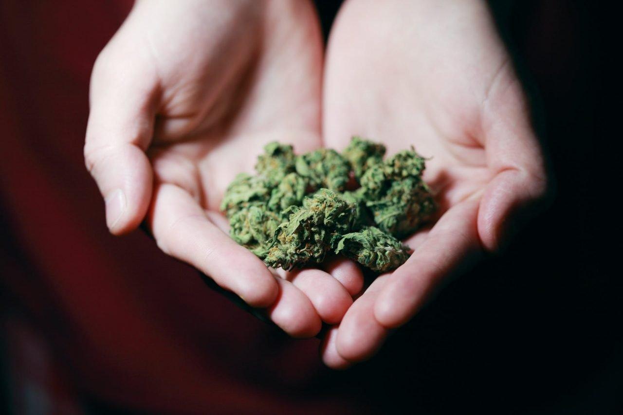 Referendum sulla cannabis - cover