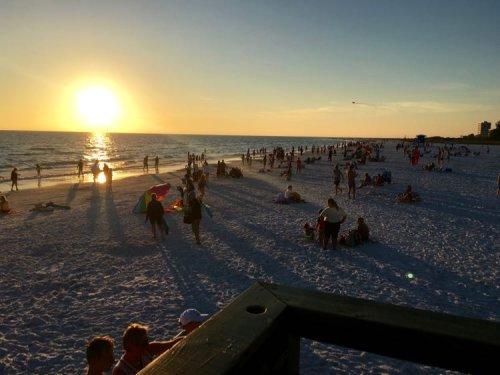 15 Cool Things to Do in Sarasota Florida