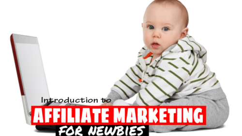 Introduction To Affiliate Marketing For Newbies | EarnShopOnline