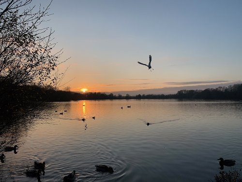 Rickmansworth Aquadrome - a hidden gem in the north west of London