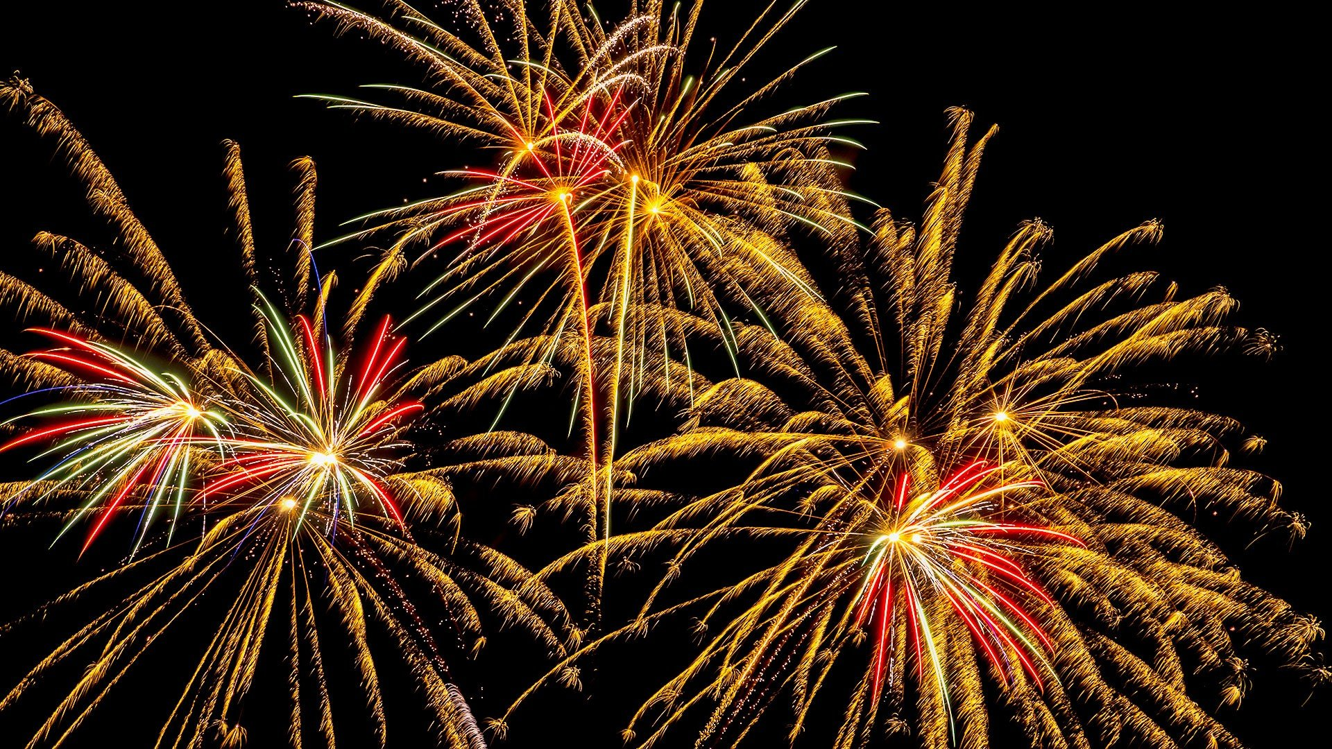 Get fired up for fireworks   Photofocus
