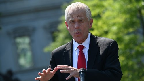 Trump Economist Peter Navarro: 'Fauci Is a Sociopath'   National Review