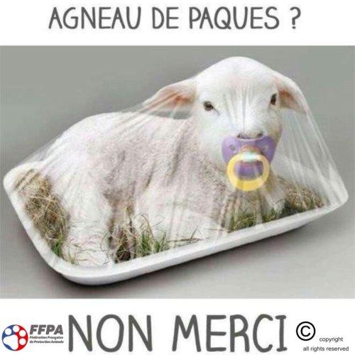Espace Actualités cover image