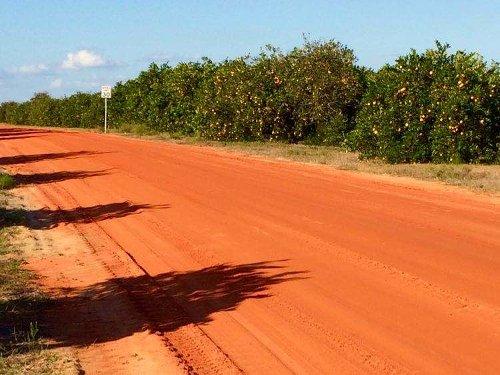 7 Fun Scenic Drives in Florida