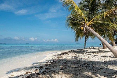 Caye Caulker Belize: 5 Reasons to Visit