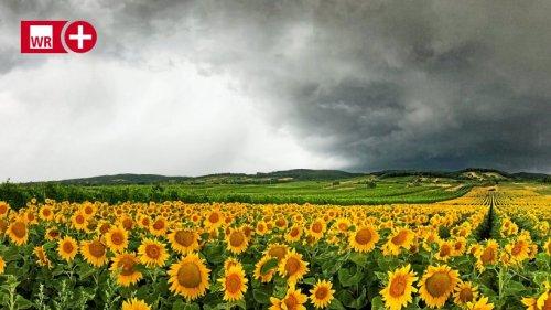 Das Wetter im HSK bleibt wechselhaft – Wo Unwetter drohen