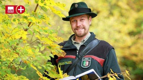 """Arnsberger Wald: """"Die Fichte wird nicht völlig verschwinden"""""""