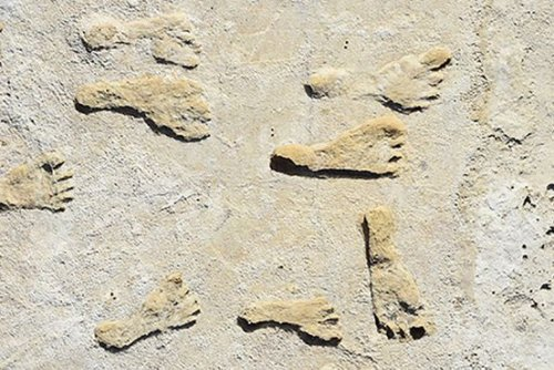 Ancient Footprints Yield Surprising New Clues About the First Americans