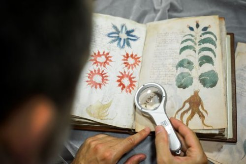 What the Mysterious Voynich Manuscript Says About Us