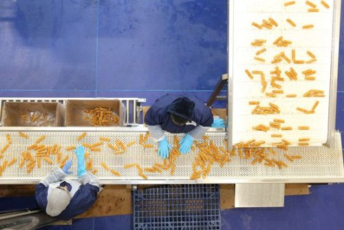 How 26 Million Pounds of American Fish Got Stuck in Canada