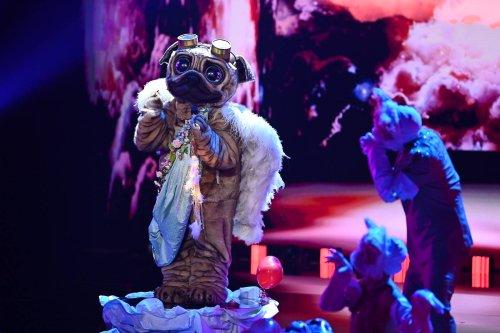 Masked Singer: Mops enthüllt - Beatrice Egli, Inka Bause oder Vanessa Mai?