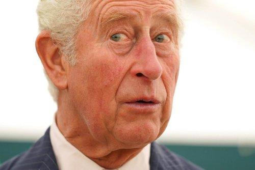 Charles und William: Fiese Klatsche für Harry - Die traurige Wahrheit hinter diesem Versöhnungsbild
