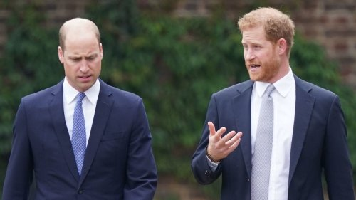 Prinz Harry & Prinz William: Jetzt bricht endgültig alles zusammen