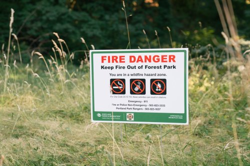 Portland Officials Fear the Largest Urban Forest in America Is a Wildfire Waiting to Happen