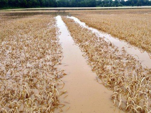 NRW: Felder unter Wasser, Schadensanalyse per Satellit