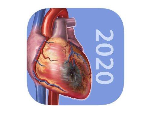 Für iPhone und iPad: App-Charts: Bezahldienste und Gesundheitsthemen