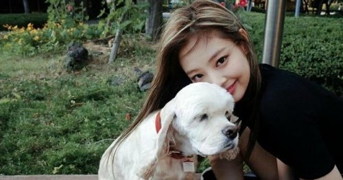 Blackpink's pets are so cute that will melt your heart!