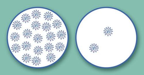 Common cold combats COVID-19