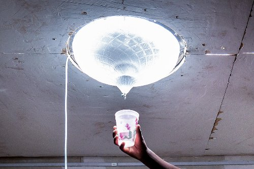 Lexus Design Award announces its Grand Prix winner for 2021, the 'Portable Solar Distiller'