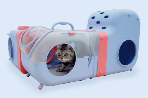 This interactive cat carrier is a play area that also monitors your pet's heart rate!