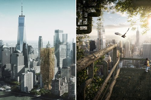 This skyscraper concept uses genetically modified trees to grow into a living architectural structure