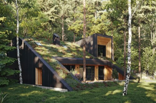 This passive house features a living green roof that merges the home with its forested surroundings!