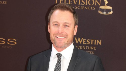 Chris Harrison's 'GMA' interview reportedly 'the nail in the coffin' for possible 'Bachelor' return