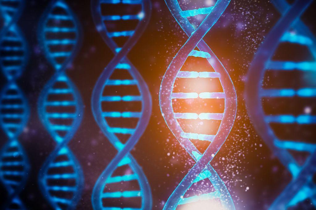 Genetics  - cover
