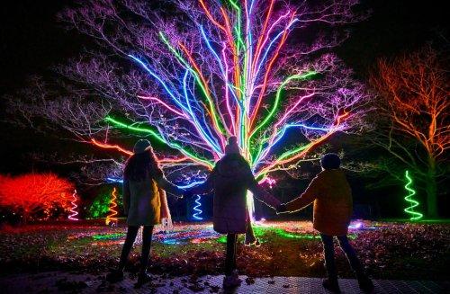 Christmas at Temple Newsam: Make everlasting memories on magical trail
