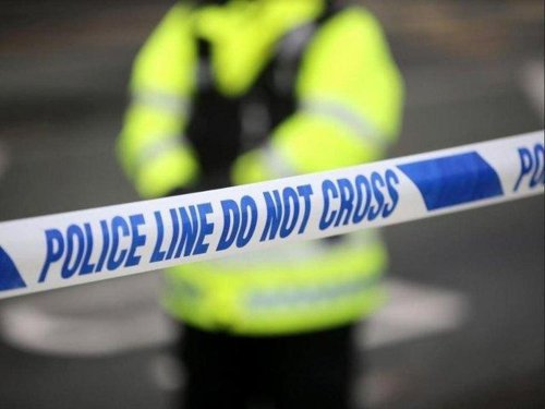 Police appeal after driver dies following collision with lamppost and tree in Shadwell