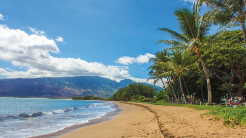 Hawaii Tourism Authority Suggests These Options Due To Lack Of Rental Cars