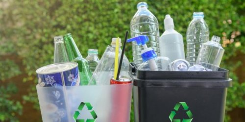 I'm An Environmental Scientist — And I Don't Care If You Recycle