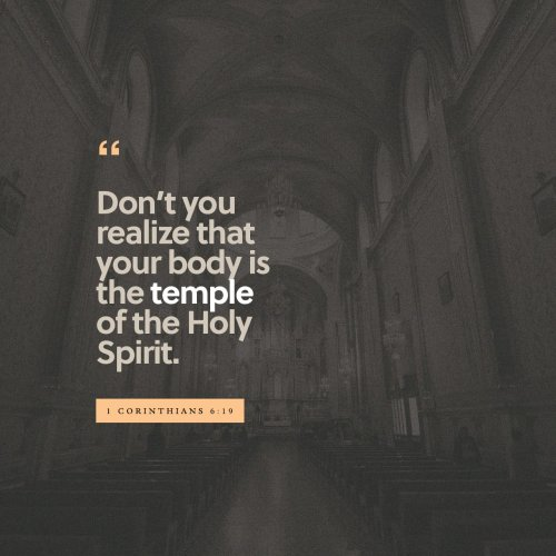 1 Corinthians 6:19 Don't you realize that your body is the temple of the Holy Spirit, who lives in you and was given to you by God? You do not belong to yourself | New Living Translation (NLT) | Download The Bible App Now