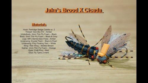 Jake's Brood X Cicada