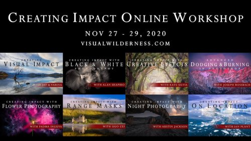 Creating Impact with Nature Photography Webinar