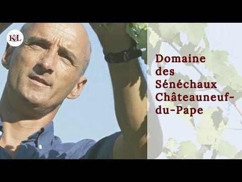 Review of 2016 Domaine des Sénéchaux Châteauneuf-du-Pape