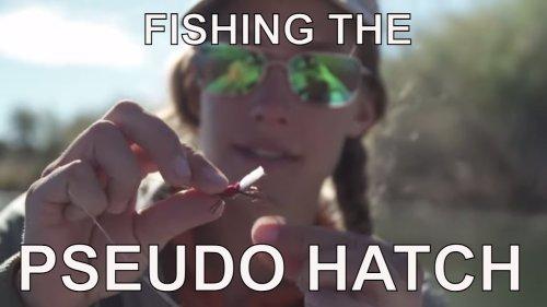 Fishing The PSEUDO Hatch | Wyoming