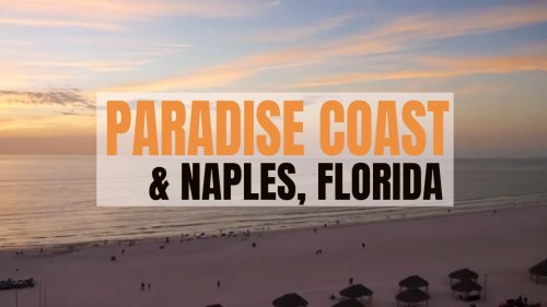 TOP Things To Do on the Paradise Coast FLORIDA