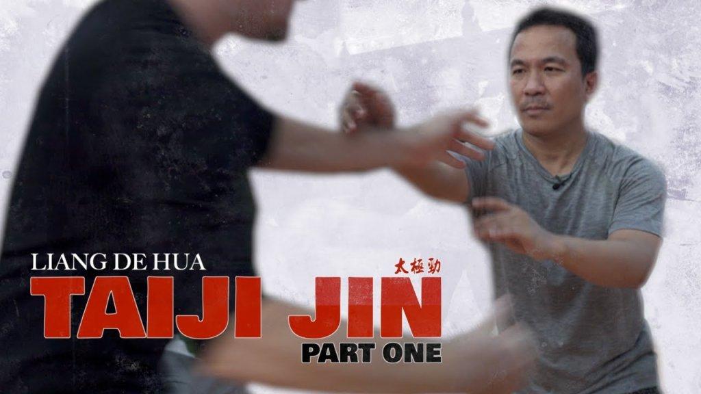 Tai Chi & the Fight  - cover